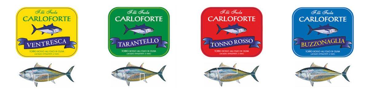 CARLOFORTE-TAGLIO TONNO