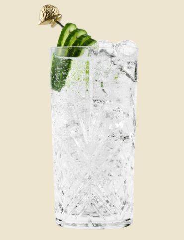 Gin Tonic Perfetto