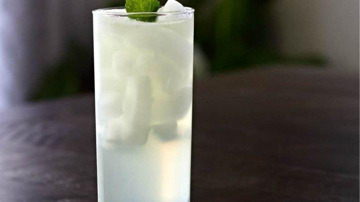 Gin Fizz - Drink Ottimo